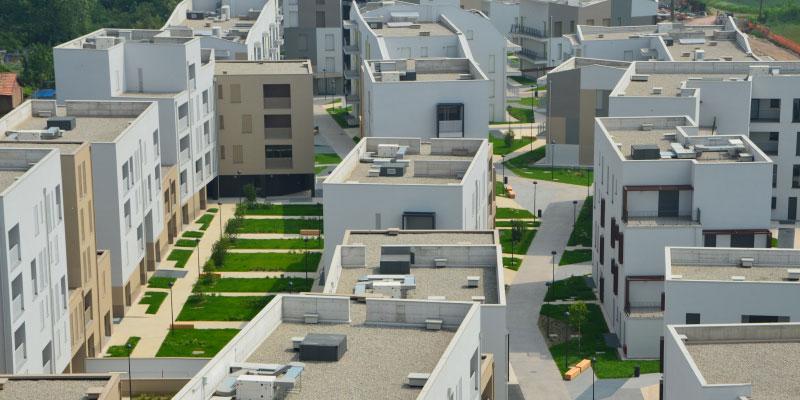 Municipio 7